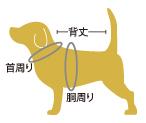 犬のサイズ測り方