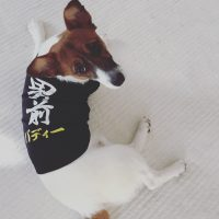 オリジナル名入れ犬Tシャツ
